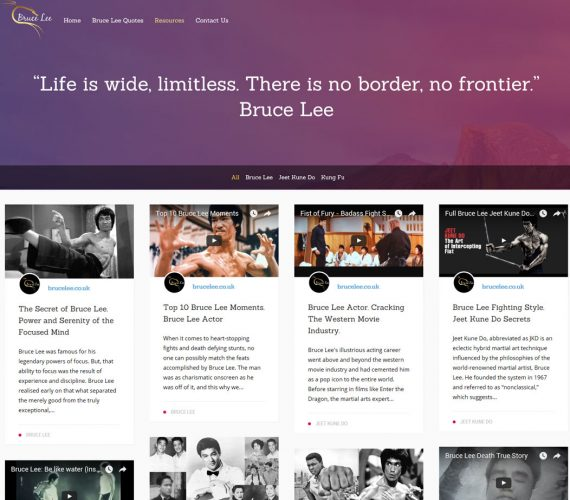 Bruce Lee website design